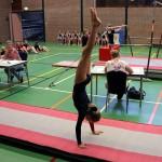 Clubkampioenschappen2014_1